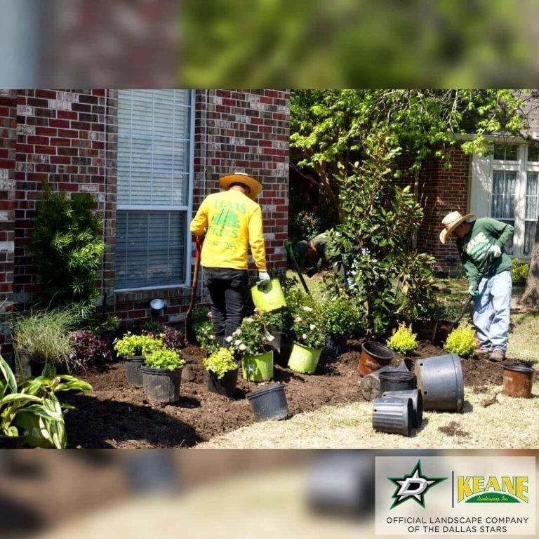 Dallas Landscaping Service Keane Landscaping Inc
